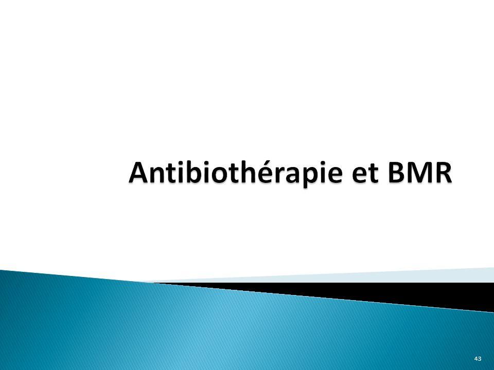 Antibiothérapie et BMR