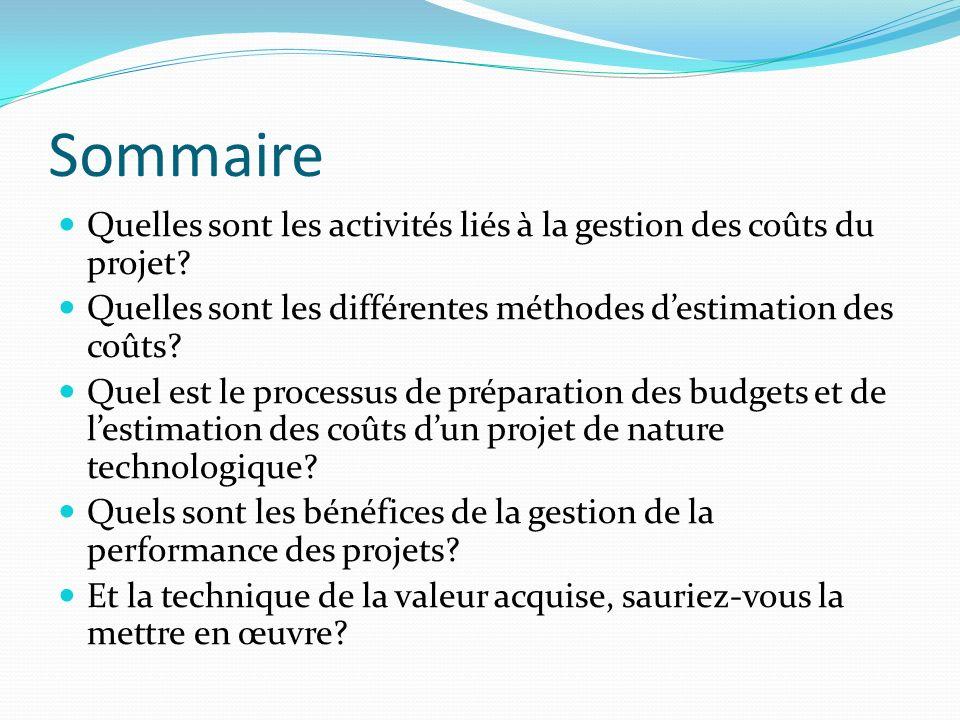 Sommaire Quelles sont les activités liés à la gestion des coûts du projet Quelles sont les différentes méthodes d'estimation des coûts