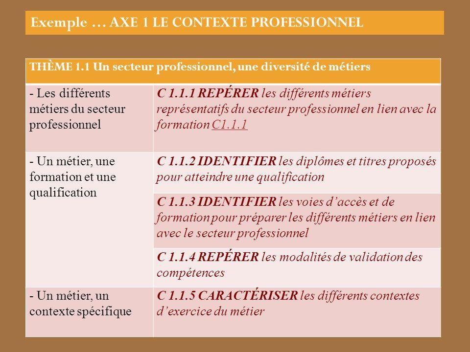 Exemple … AXE 1 LE CONTEXTE PROFESSIONNEL