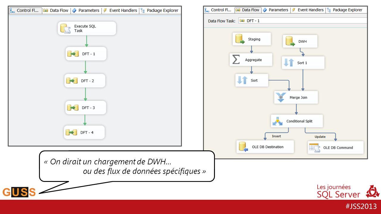 « On dirait un chargement de DWH… ou des flux de données spécifiques »