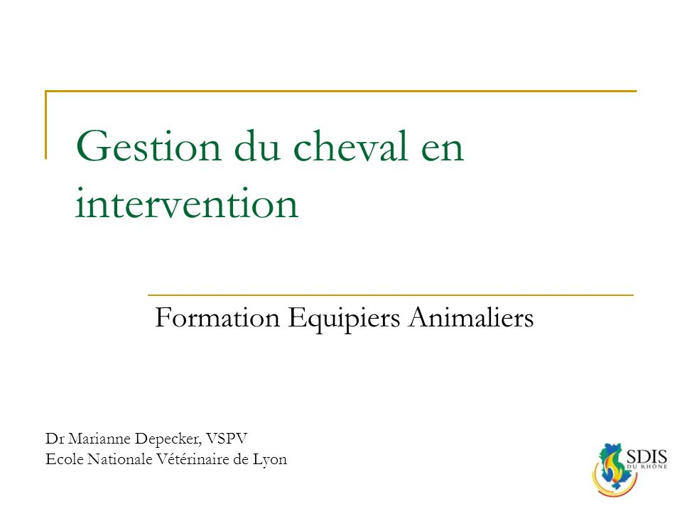 Gestion du cheval en intervention