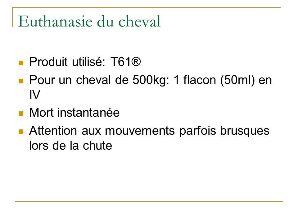 Euthanasie du cheval Produit utilisé: T61®