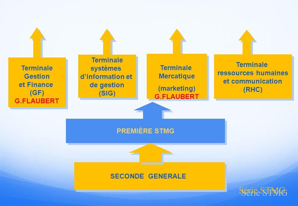 Série STMG Terminale Terminale systèmes Terminale Terminale