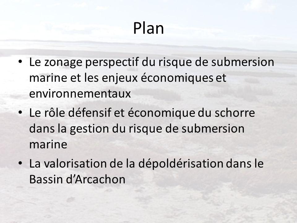 Plan Le zonage perspectif du risque de submersion marine et les enjeux économiques et environnementaux.