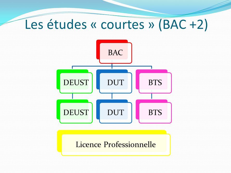 Les études « courtes » (BAC +2)
