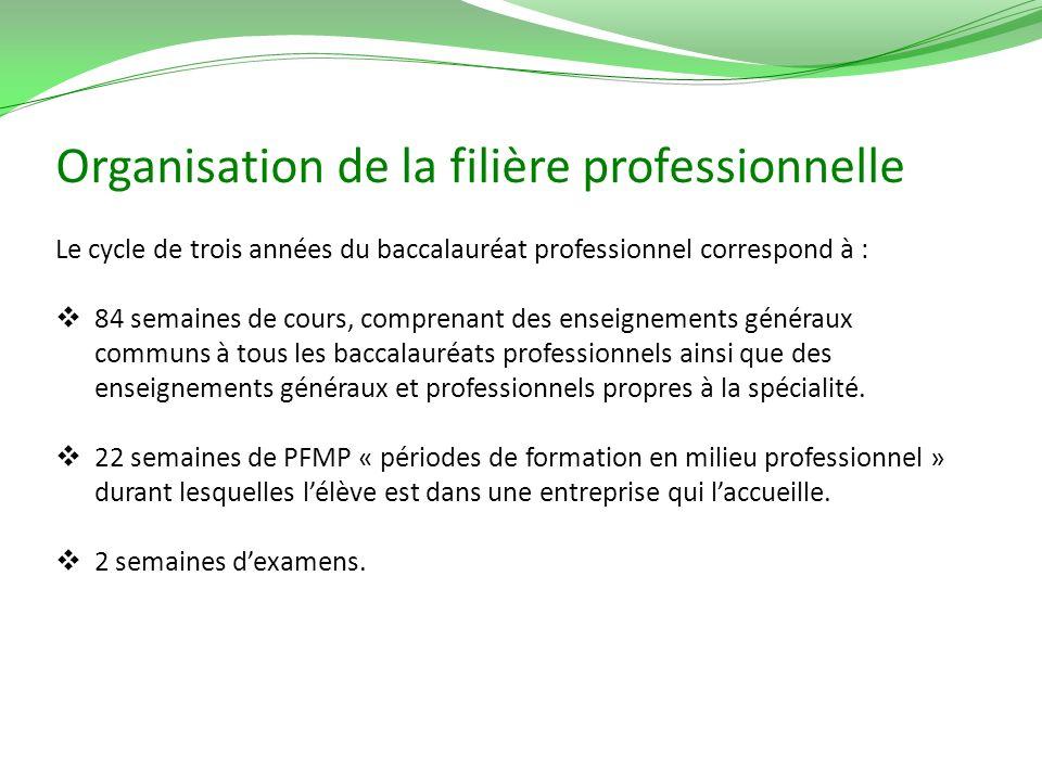 Organisation de la filière professionnelle