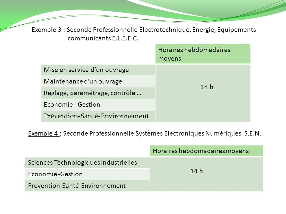 Exemple 3 : Seconde Professionnelle Electrotechnique, Energie, Equipements communicants E.L.E.E.C.