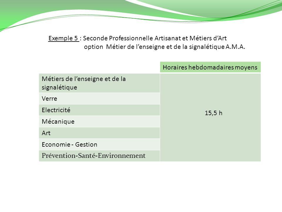 Exemple 5 : Seconde Professionnelle Artisanat et Métiers d'Art option Métier de l'enseigne et de la signalétique A.M.A.