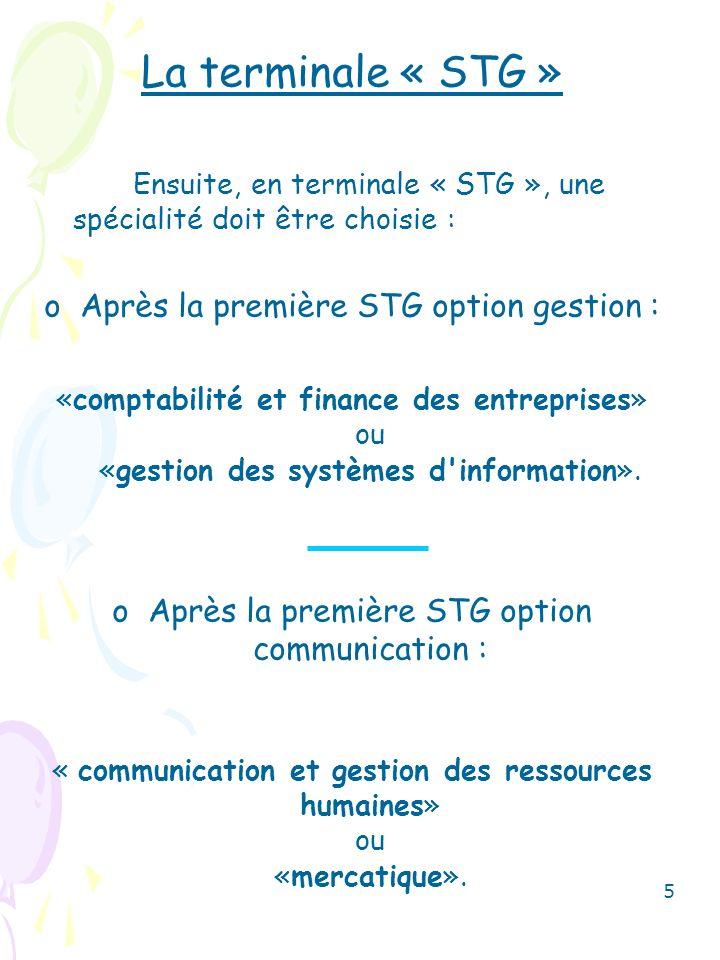 La terminale « STG » Après la première STG option gestion :