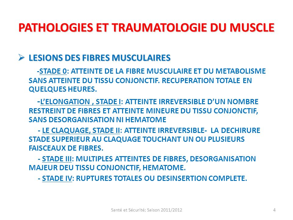PATHOLOGIES ET TRAUMATOLOGIE DU MUSCLE