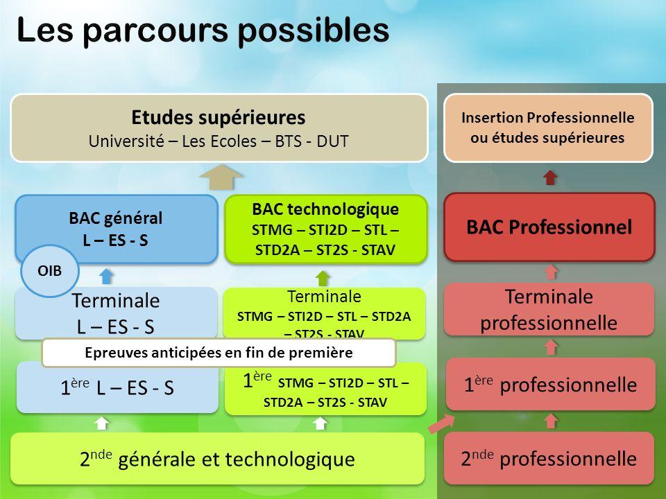STMG – STI2D – STL – STD2A – ST2S - STAV Insertion Professionnelle
