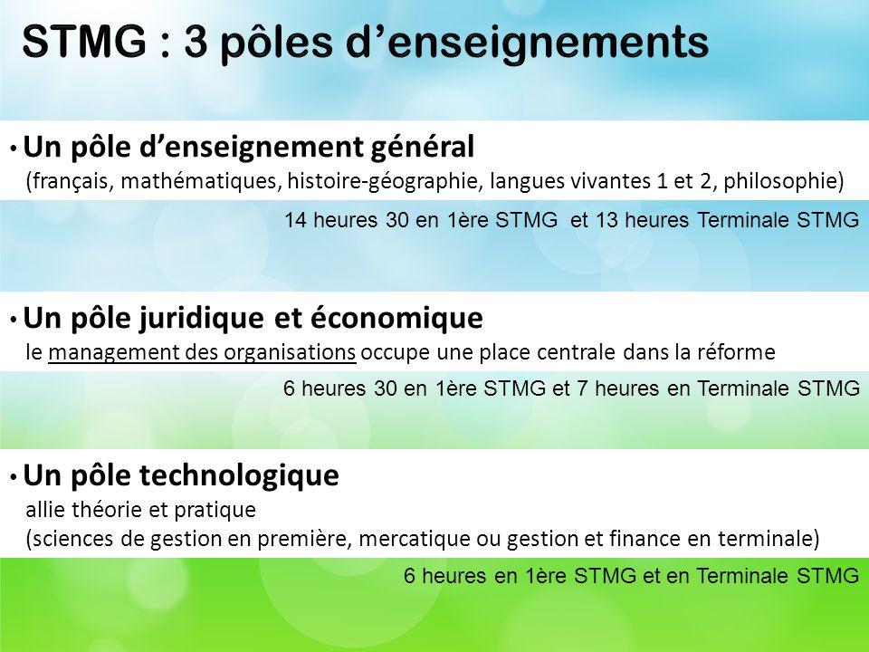 STMG : 3 pôles d'enseignements