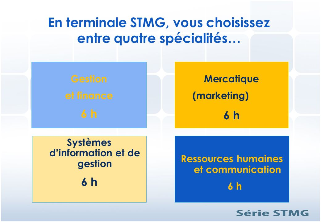 En terminale STMG, vous choisissez entre quatre spécialités…