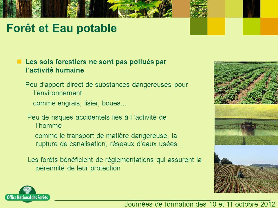 Forêt et Eau potable Les sols forestiers ne sont pas pollués par l'activité humaine.