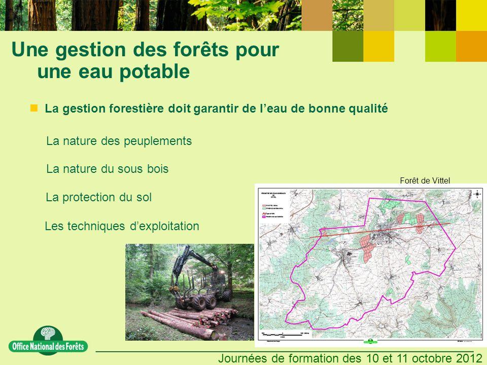 Une gestion des forêts pour une eau potable