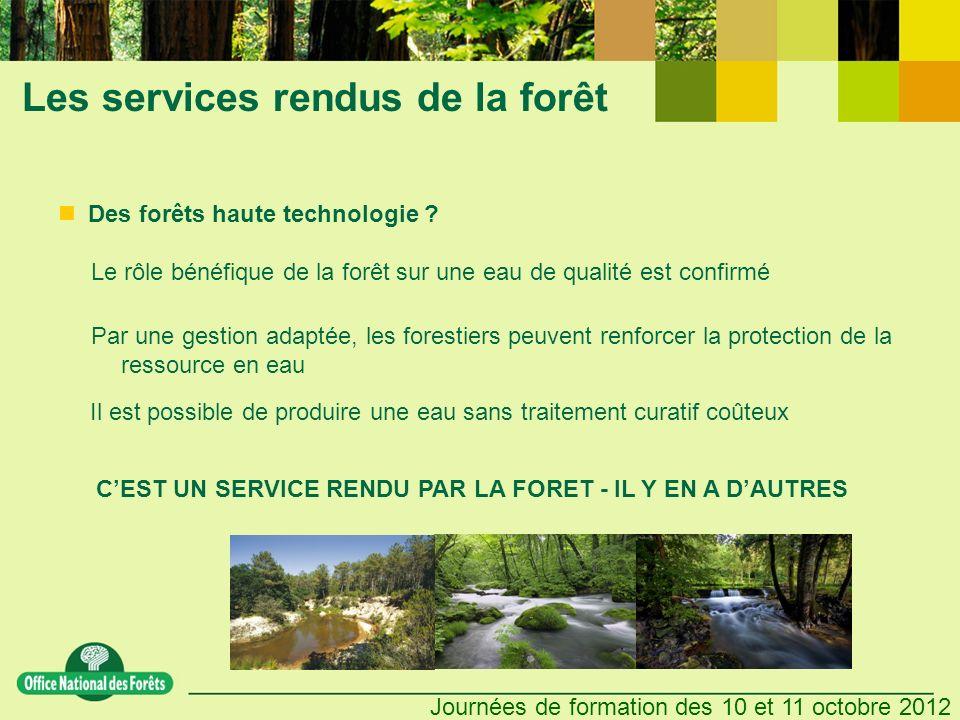 Les services rendus de la forêt