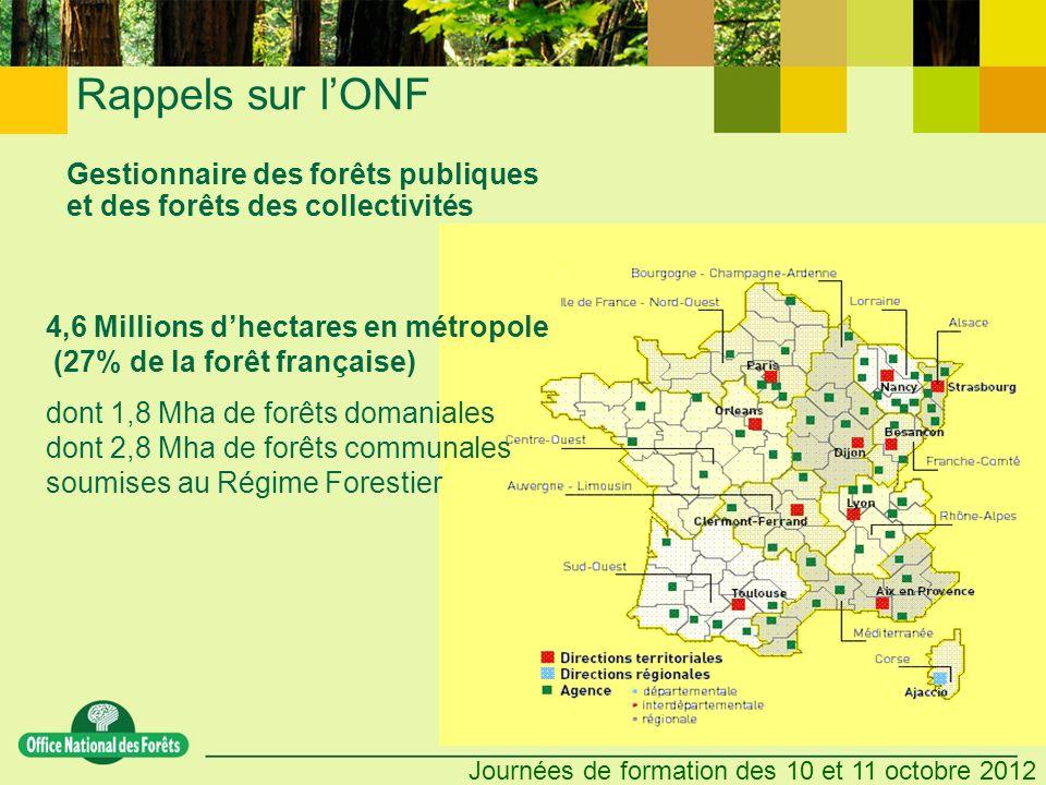 Gestionnaire des forêts publiques et des forêts des collectivités