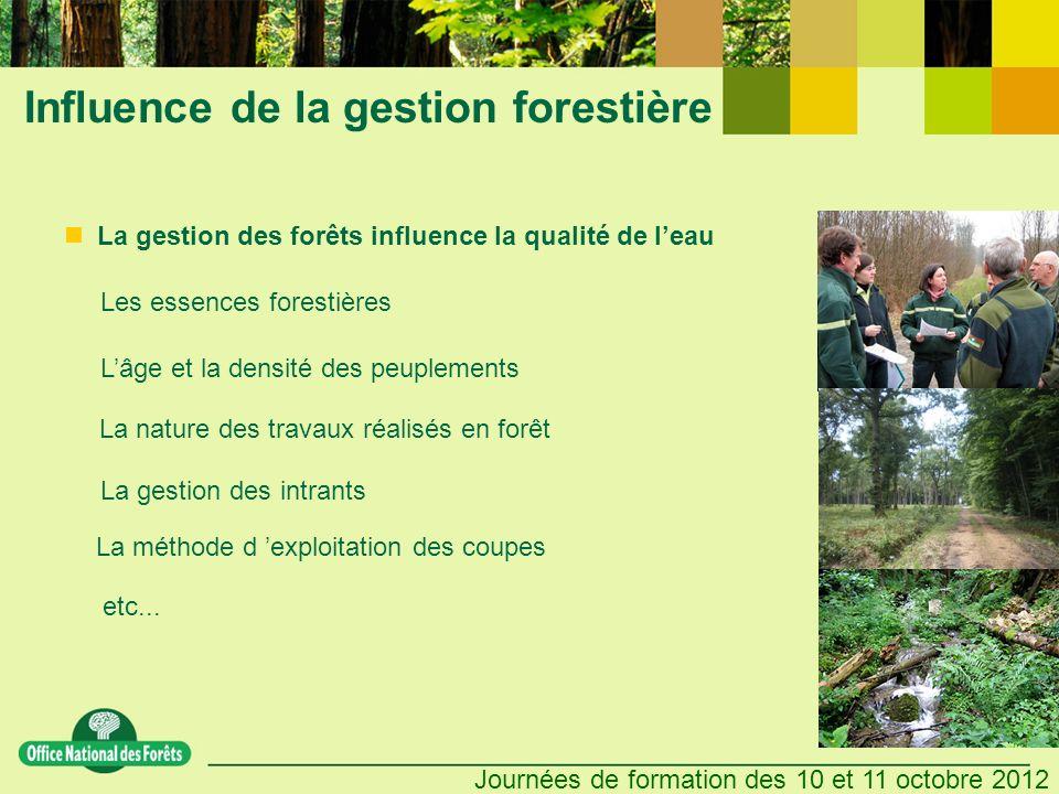 Influence de la gestion forestière
