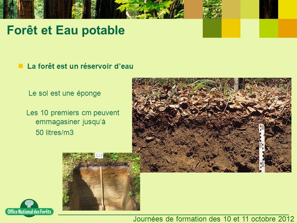 Forêt et Eau potable La forêt est un réservoir d'eau