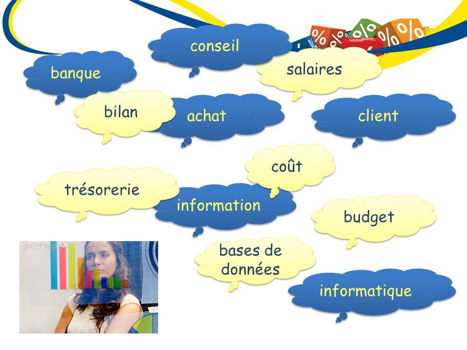 conseil salaires. banque. bilan. achat. client. coût. trésorerie. information. budget. bases de données.