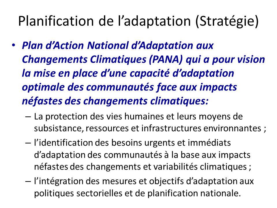 Planification de l'adaptation (Stratégie)