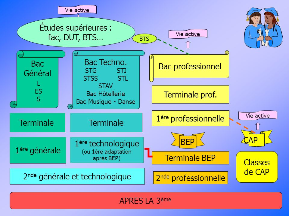 Études supérieures : fac, DUT, BTS…