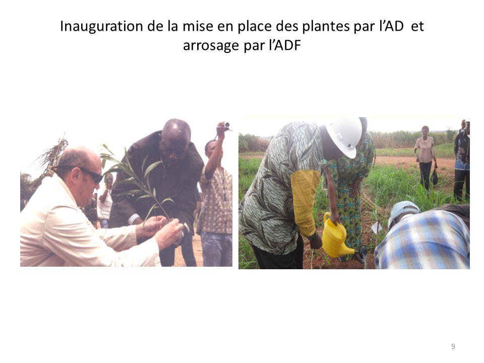 Inauguration de la mise en place des plantes par l'AD et arrosage par l'ADF