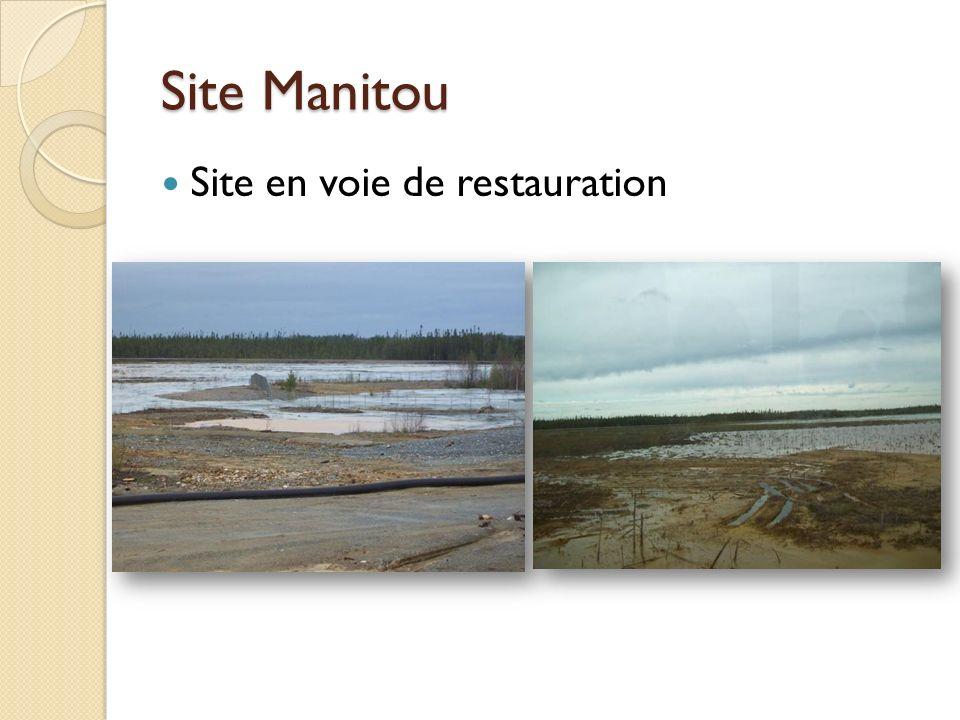 Site Manitou Site en voie de restauration
