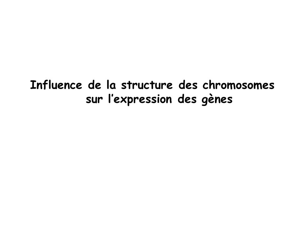 Influence de la structure des chromosomes