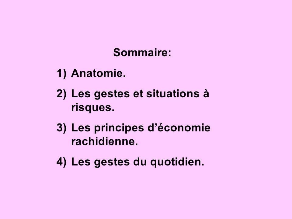 Sommaire: Anatomie. Les gestes et situations à risques.