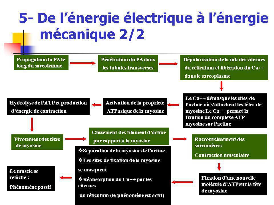 5- De l'énergie électrique à l'énergie mécanique 2/2
