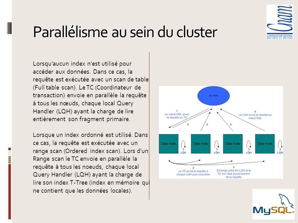 Parallélisme au sein du cluster