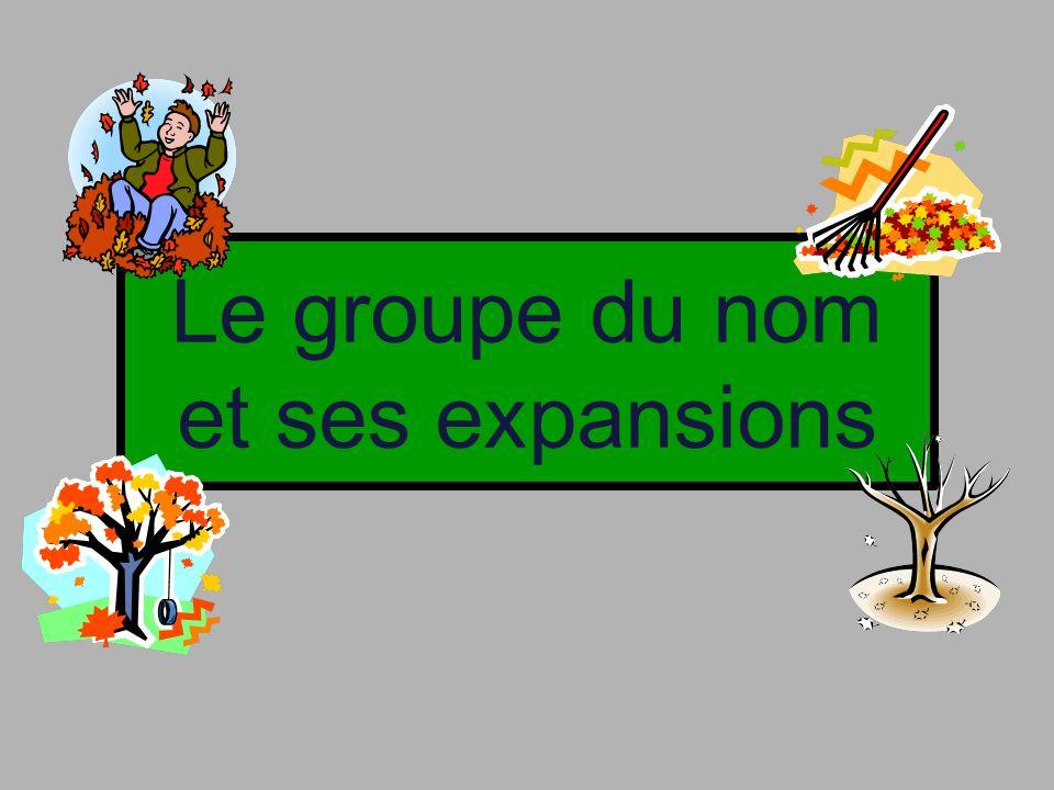 Le groupe du nom et ses expansions