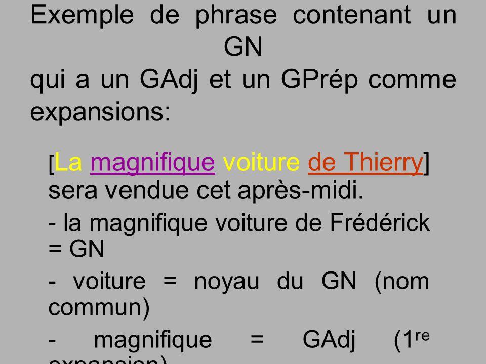 Exemple de phrase contenant un GN qui a un GAdj et un GPrép comme expansions: