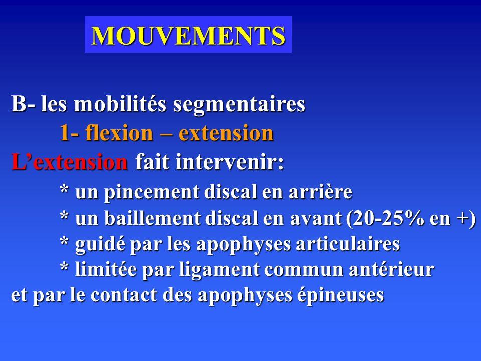 MOUVEMENTS B- les mobilités segmentaires