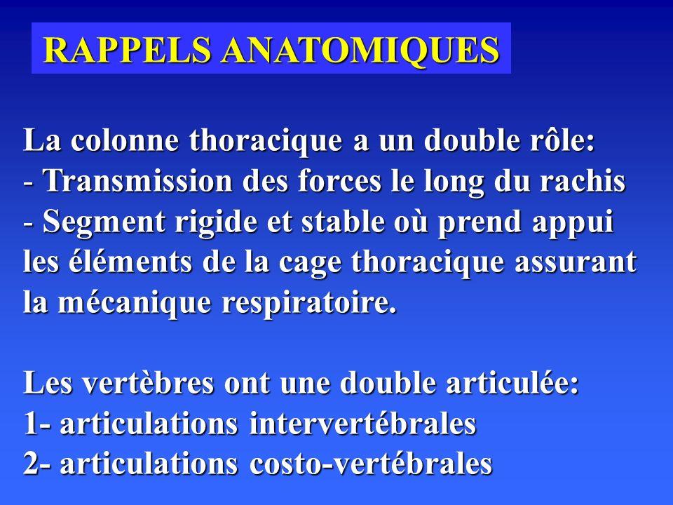 RAPPELS ANATOMIQUES La colonne thoracique a un double rôle: