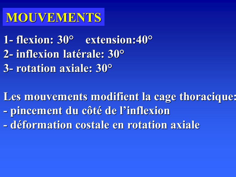 MOUVEMENTS 1- flexion: 30° extension:40° 2- inflexion latérale: 30°