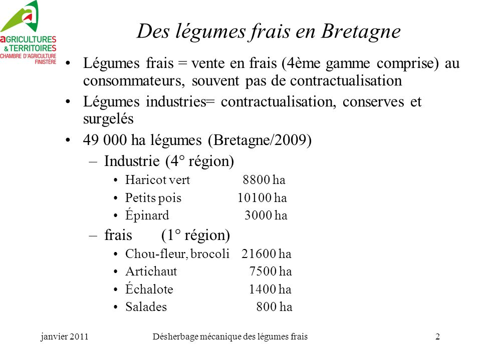 Des légumes frais en Bretagne