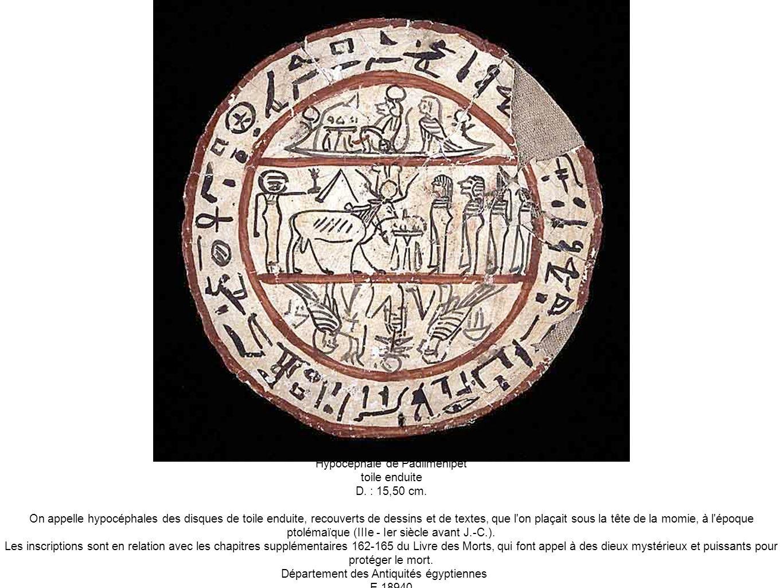 Hypocéphale de Padiimenipet toile enduite D. : 15,50 cm.