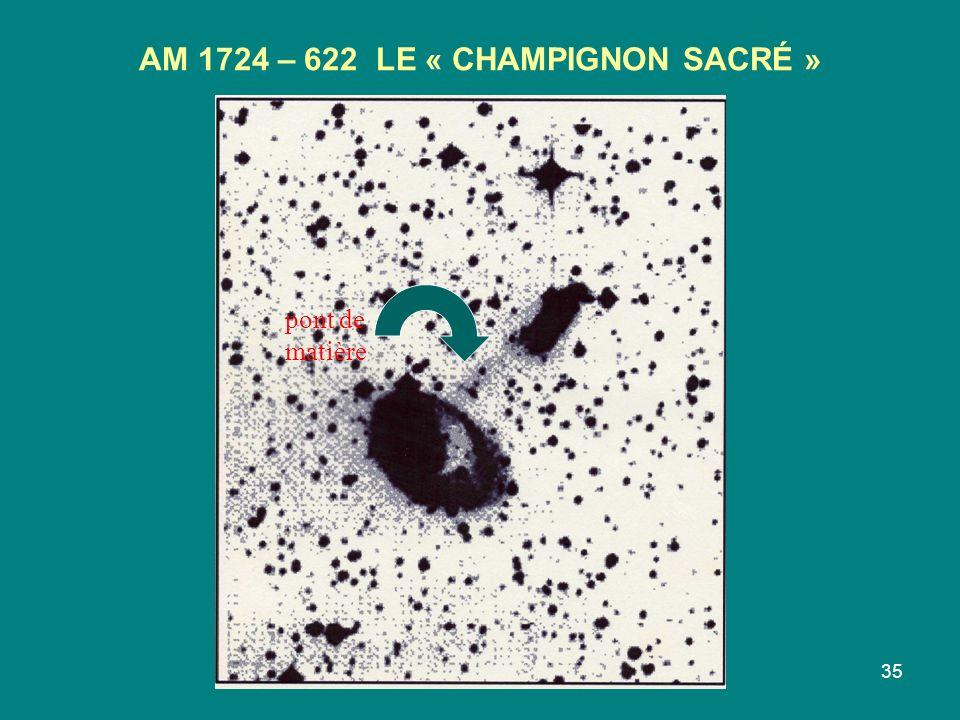 AM 1724 – 622 LE « CHAMPIGNON SACRÉ »