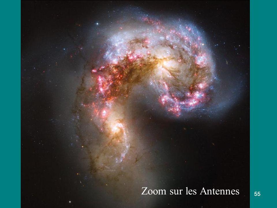 Zoom sur les Antennes