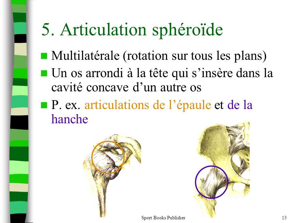 5. Articulation sphéroïde