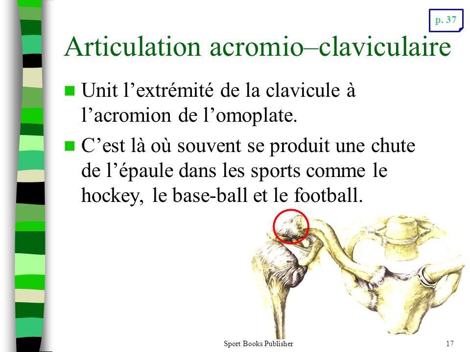 Articulation acromio–claviculaire