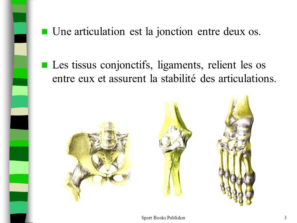 Une articulation est la jonction entre deux os.