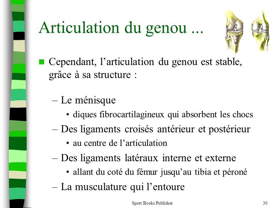 Articulation du genou ... Cependant, l'articulation du genou est stable, grâce à sa structure : Le ménisque.