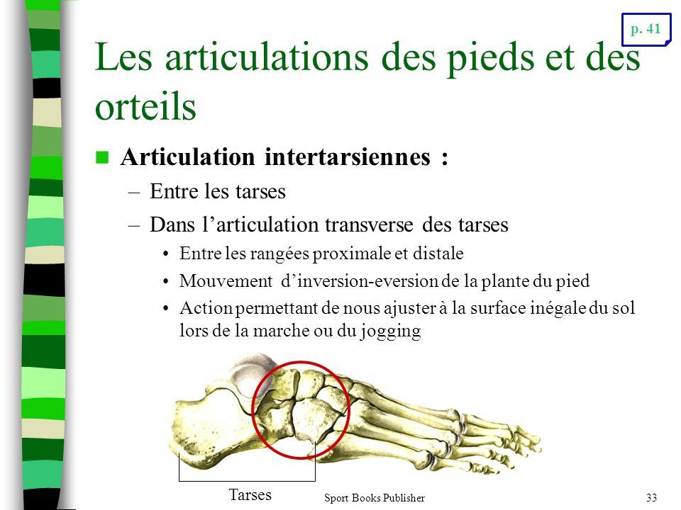 Les articulations des pieds et des orteils