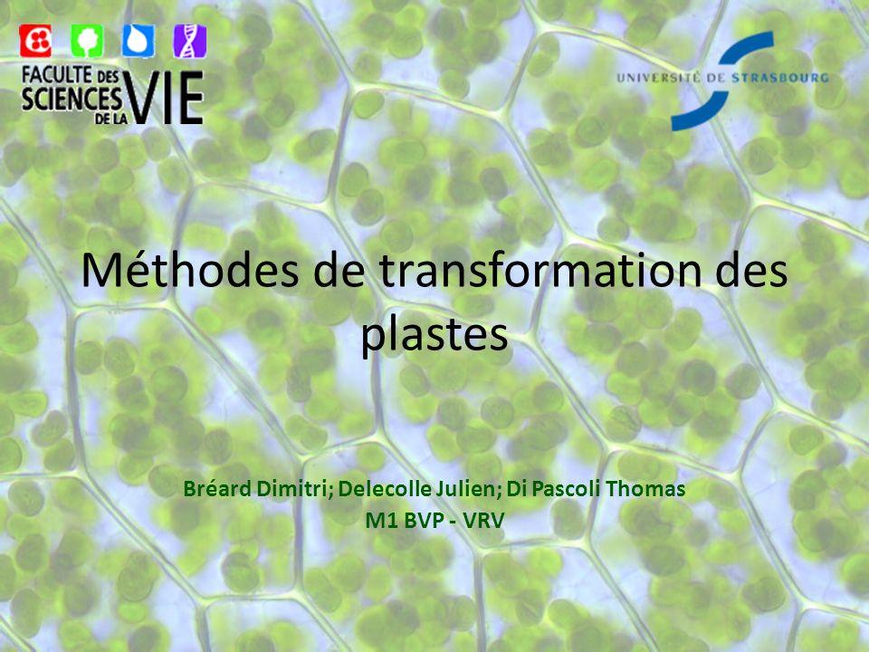 Méthodes de transformation des plastes
