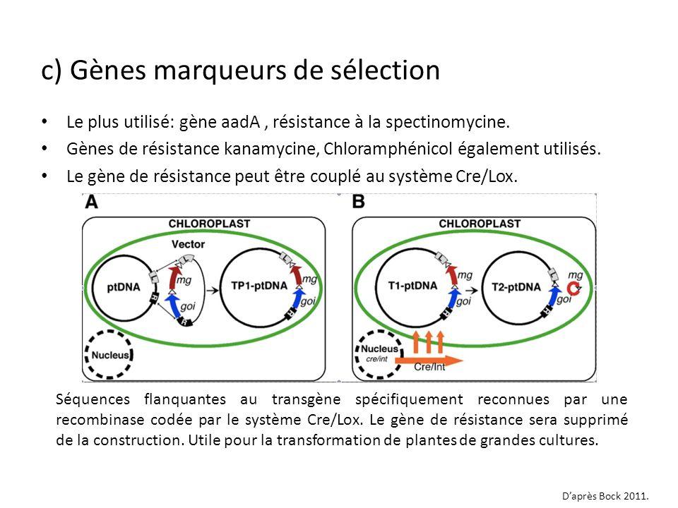 c) Gènes marqueurs de sélection
