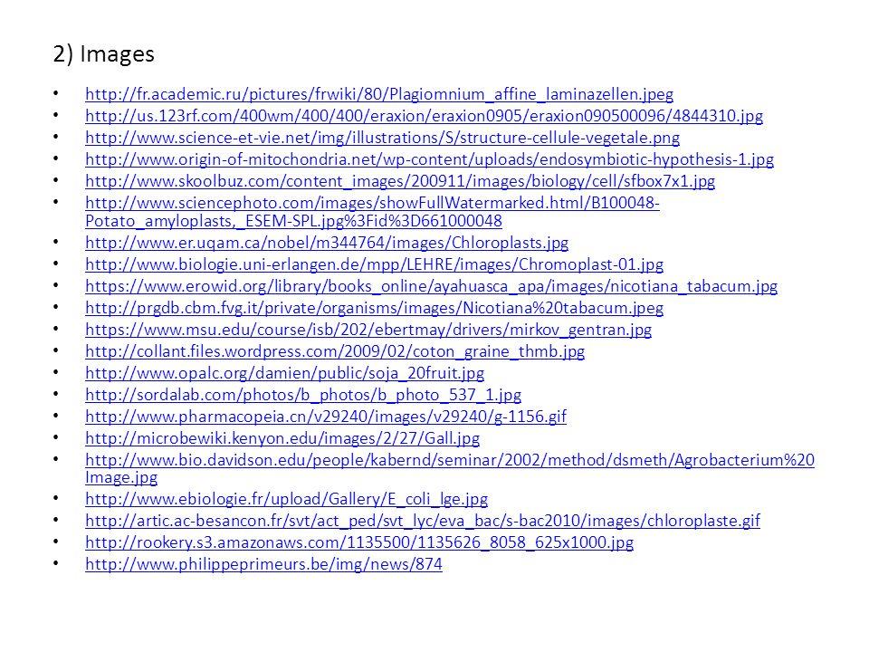 2) Images http://fr.academic.ru/pictures/frwiki/80/Plagiomnium_affine_laminazellen.jpeg.