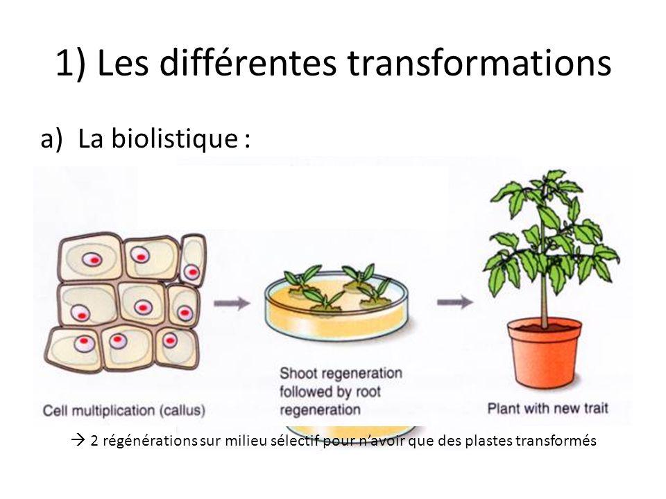 1) Les différentes transformations